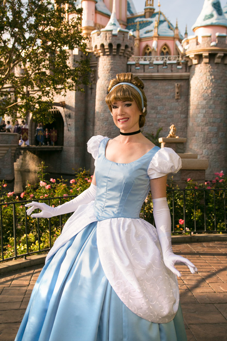 Kay Dee Collection Costumes - Cinderella Blue Ball Gown ...